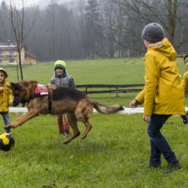 Mit lustigem Gebell ins Abenteuer: Lawinenhund Esco beschert Burschen ein wahres Abenteuer