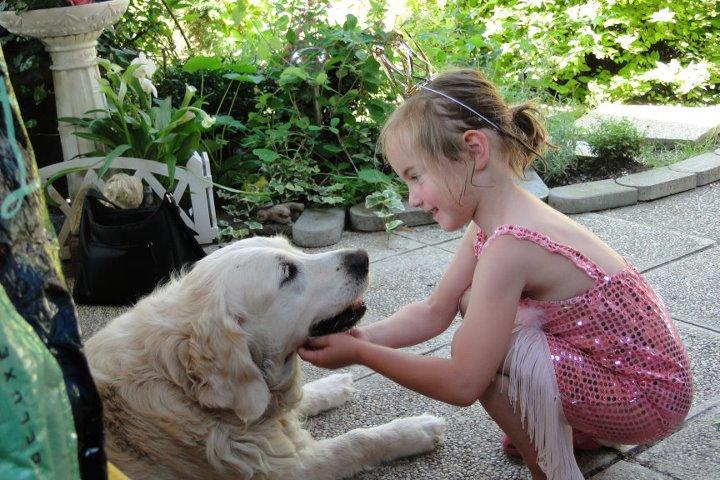 Kleines Mädchen mit Hund - Vierbeiner tun jeder Familie gut